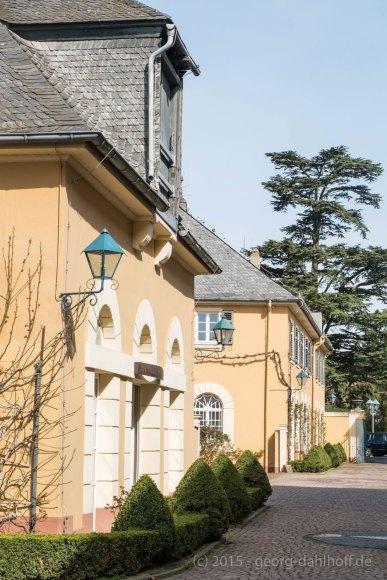 Schloss Johannisberg - Bild Nr. 201504122127