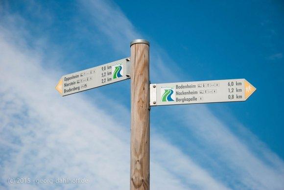Wegweiser am Rheinterrassenweg - Bild Nr. 201508230815