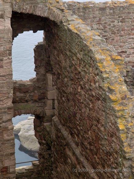 Blick nach Osten - Bild Nr. 200807262587