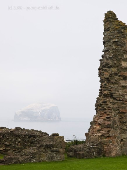 Bass Rock im Nebel - Bild Nr. 200807262609