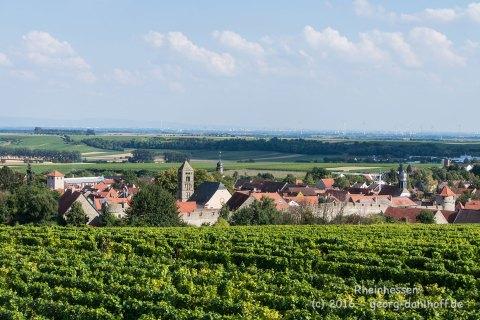 Flörsheim-Dalsheim - Bild Nr. 201608150660