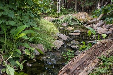 Binger Gärten 2016 - Bild Nr. 201608210711