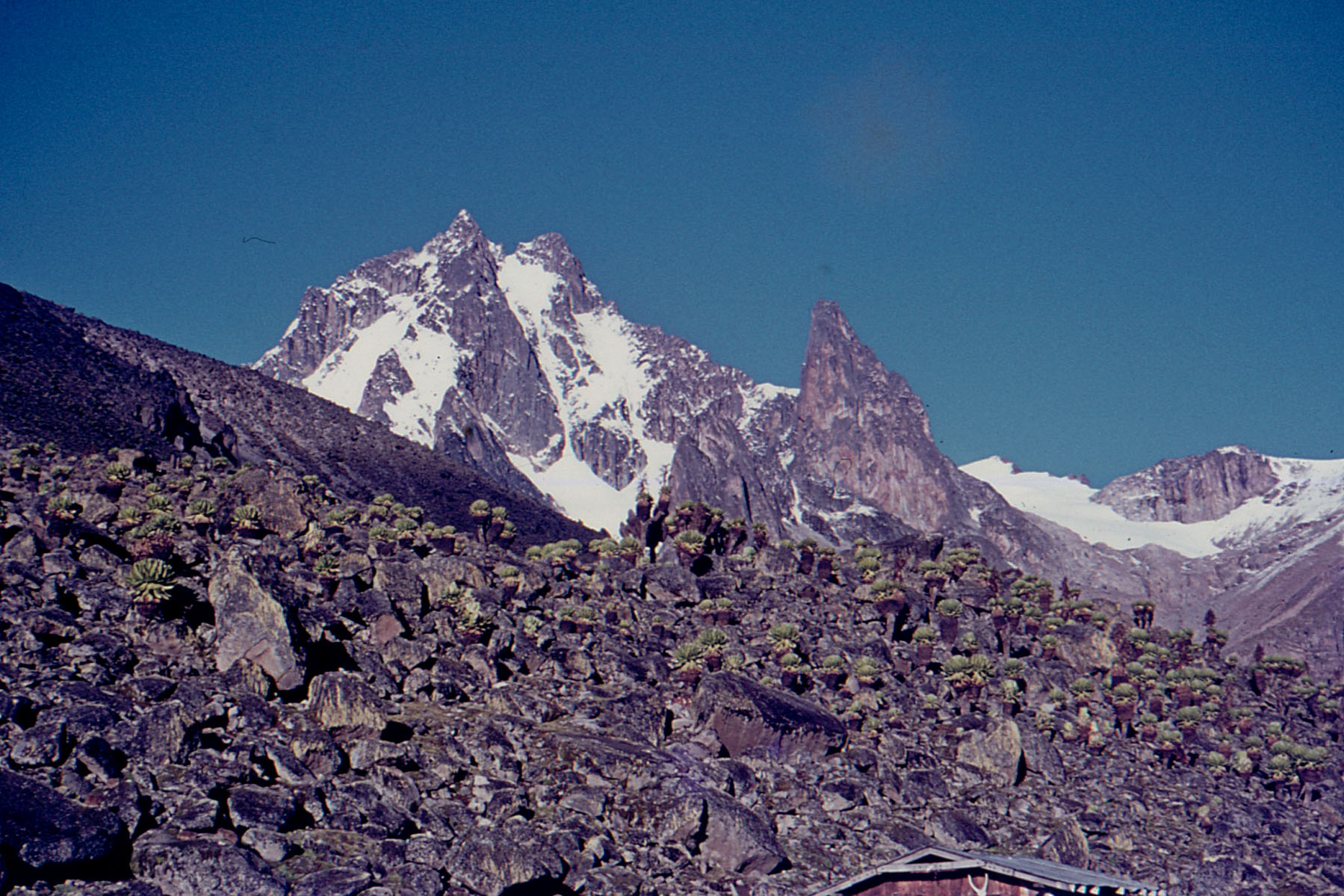 Mt-Kenya-1971004_Low-Res.jpg