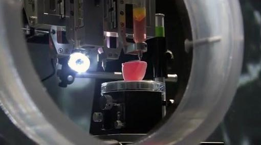3d printing a kidney