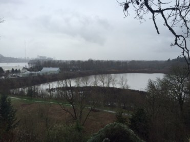 From a bluff on the northern edge of Sellwood Park, this is a view of Oaks Park and Oaks Bottom Wildlife Refuge with downtown Portland in the distance.