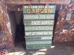 downs garden tips