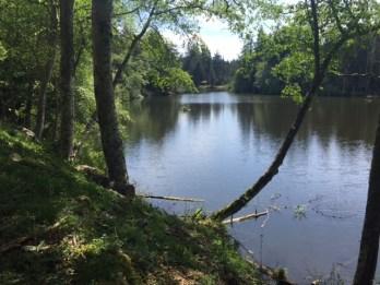 A walk around Eagle Lake slows the heartbeat.