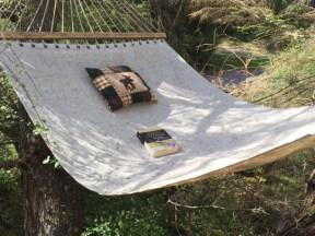 Hammock. Pillow. Book. A winning combination.
