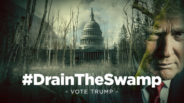 Science News Bulletin from the Swamp