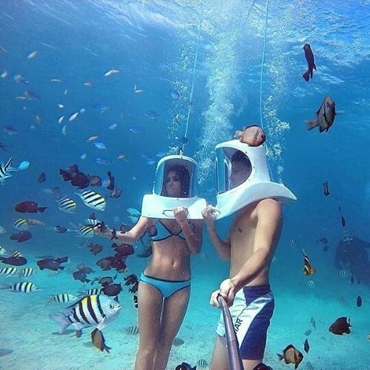 I'm not sure what that is but i wanna do it! regram 📣 @fashionschics #underwater with bae Yes or No via @getoutfits @americanselection #fashionschics . . .  #fashion #fashionista #love #makeup #fashionable #model #selfie #likeforfollow #igers #followme #followforfollow #follow4follow #throwback #swag #selfies #picoftheday #like4follow #instalove #girlfriend #followtrain #followher #fitness #bored #bestoftheday #beach #abs #style #instagood