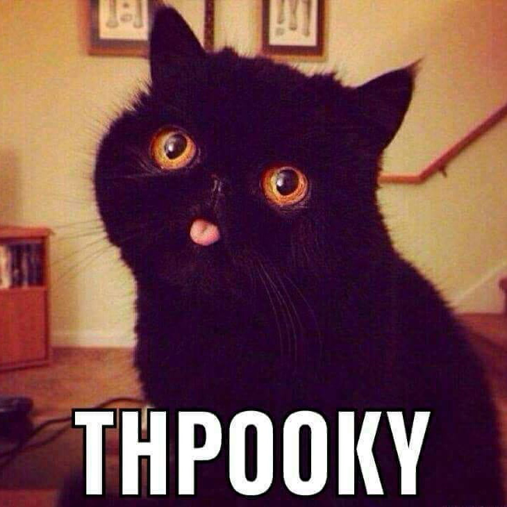 I can't stop laughing at this cat! Thpooky! Lololol 😂 Boo! Read my 🎃 #Halloween story on amazon, click the link in my bio. 👻 #kindle #spooky #augmentedreality #vampire #werewolf #ghost #witch. #hauntedhouse #scary #pumpkin #trickortreat #Greece #cyberpunk #author #bookstagram #shortstory #godcomplex #Athens #halloweenparty #mask #cat