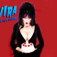 Elvira Halloween Wallpaper #14