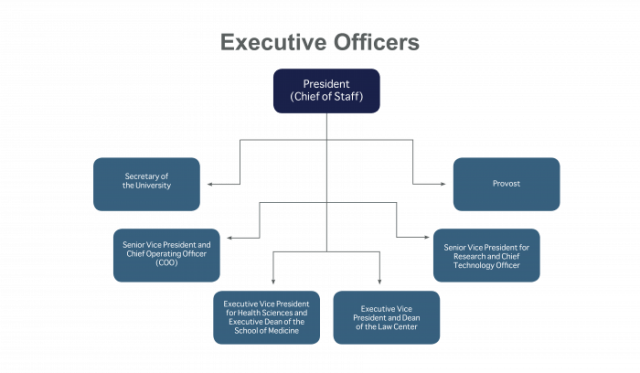 The executive officers are presented in a flowchart.