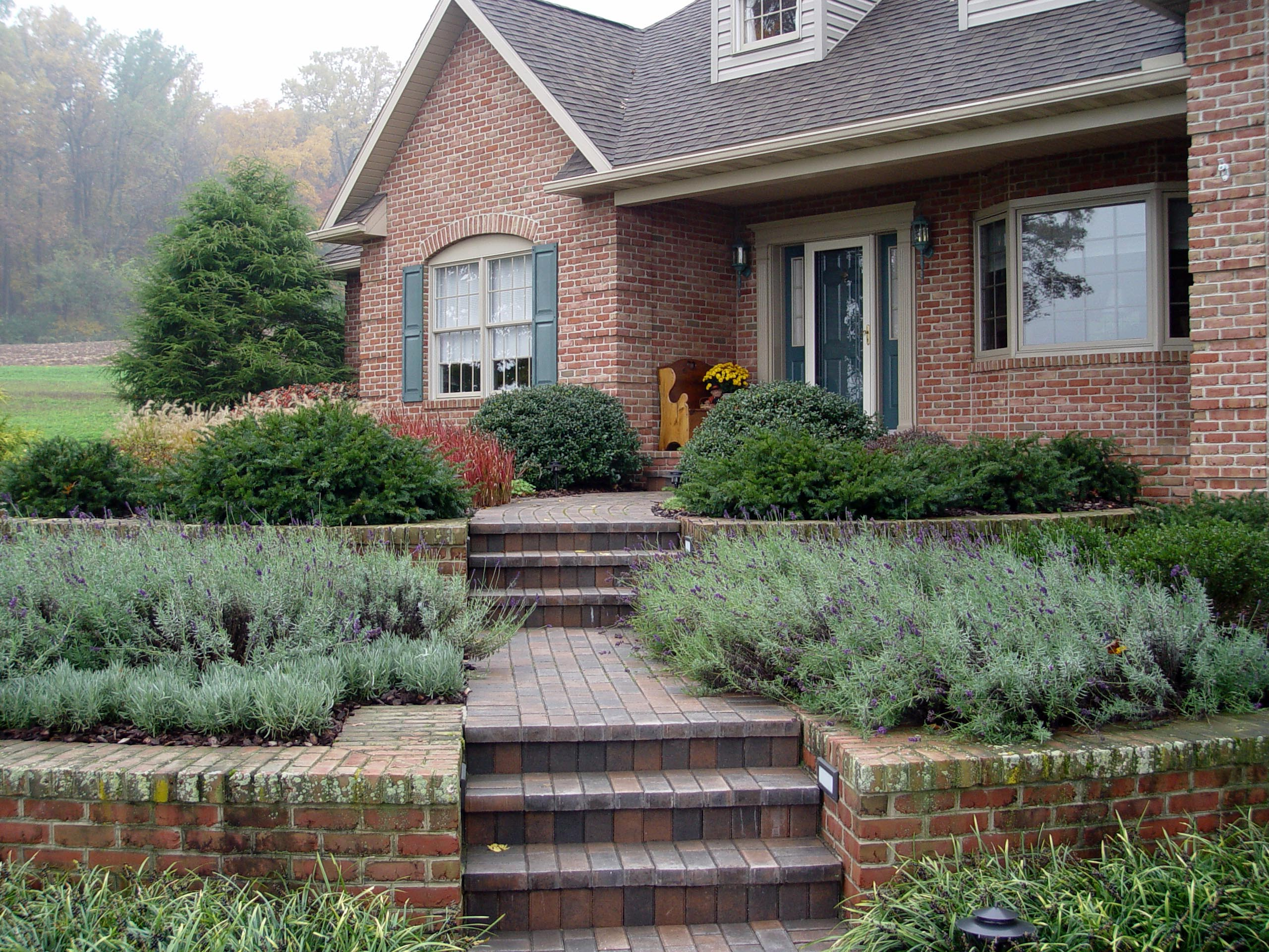 Garden Housecalls - State of Our Landscape Address on Terraced Front Yard Ideas id=40399