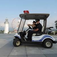 About Development - Electric Patrol Vehicles for Batumi Boulevard