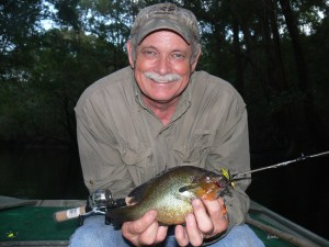 Dickie Winge displays one of the big redbreasts he caught on Friday night on the upper Satilla River.