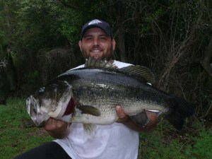 Congratulations to Kevin Mullis of Waycross for catching the new river record largemouth bass from the Satilla River. The monster was certified on Friday at exactly 12 pounds. He fooled the behemoth with a small, chartreuse crankbait.