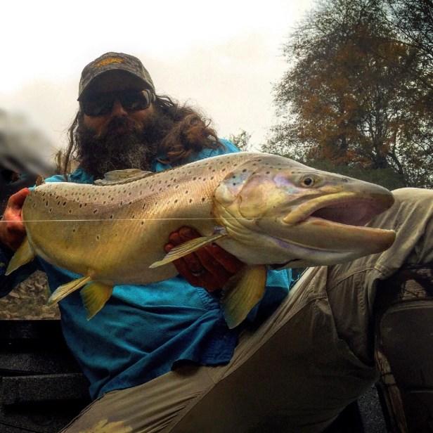 Trout bnt 34in Hooch TW release McCloskey Nov 2015