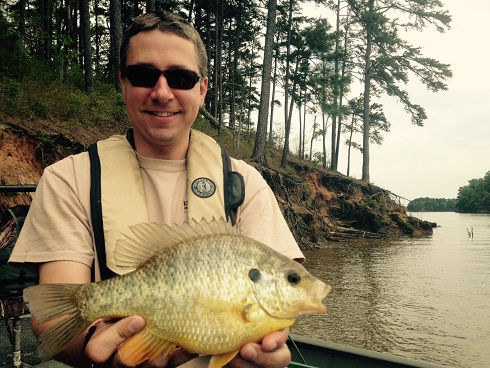 sunfish shellcracker Toona sample 4-20-16 small