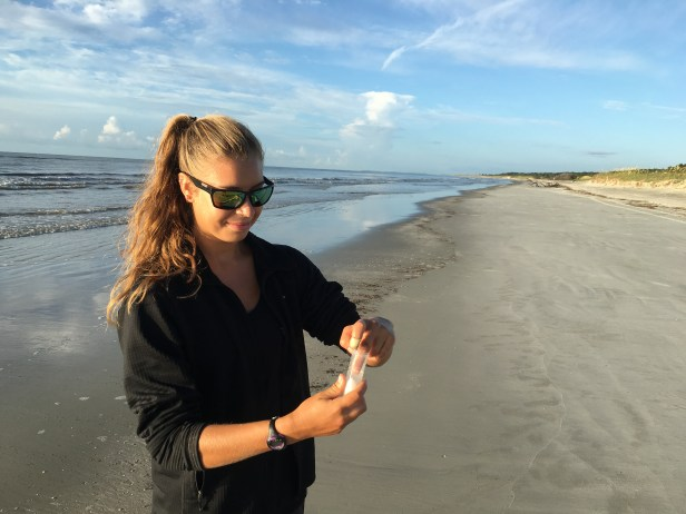 Sara Weaver collects an egg sample for gentic analysis on Sapelo