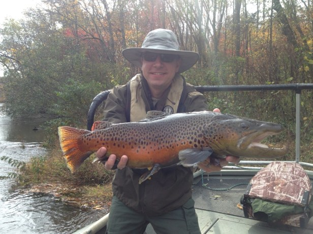trout-bnt1-blue-ridge-tw-oct-2016-jpg