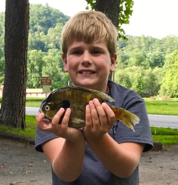 sunfish bluegill big JackThomson Aug 2017