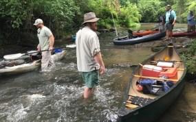 Kayak Bass STudy