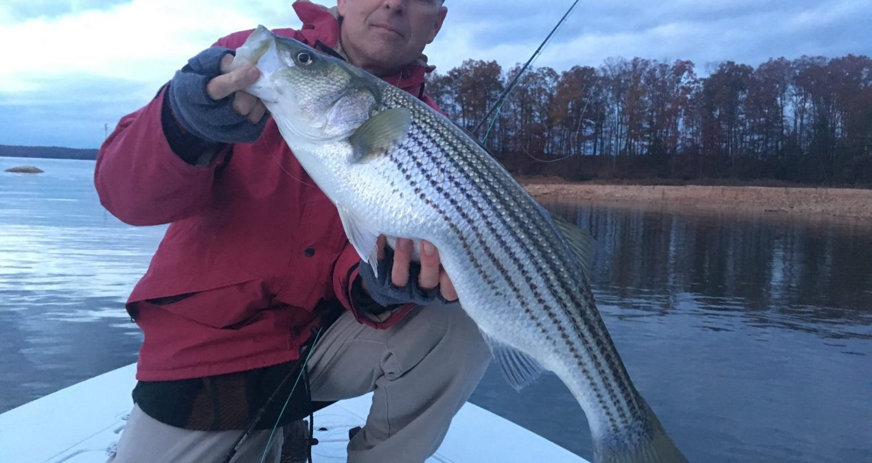 Georgia Fishing Report: November 24, 2017
