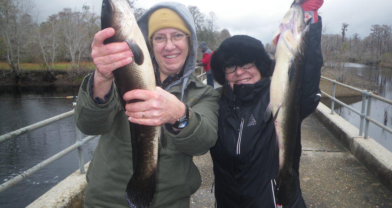 Georgia Fishing Report: December 15, 2017