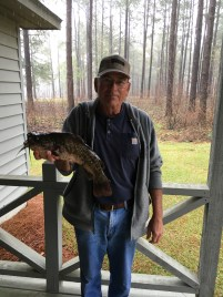 James Royals caught this 3-pound brown bullhead catfish while crappie fishing at Paradise Public Fishing Area. It earned him a DNR angler-award.