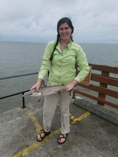 SE GA Hannah Dinkins - Scalloped Hammerhead Shark 5 18