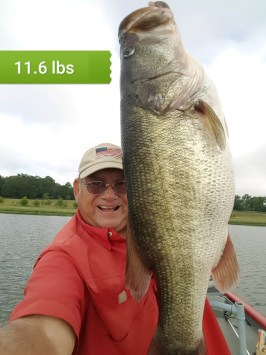 Central GA Flat Creek PFA 11.6 pound largemouth