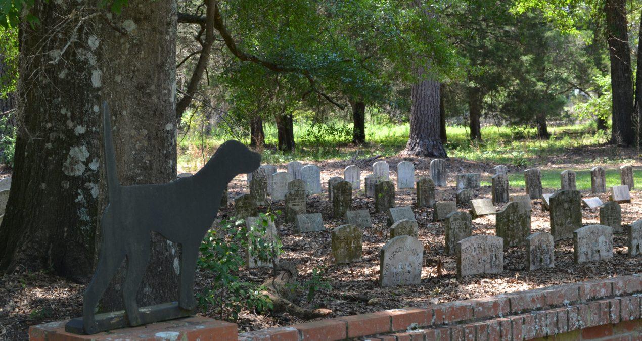 A Grave History: Di-Lane Plantation WMA