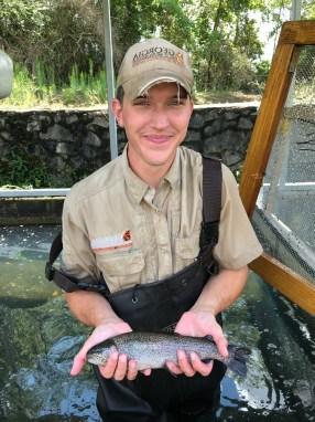 trout rbt Summ stocker EricW 8-10-18
