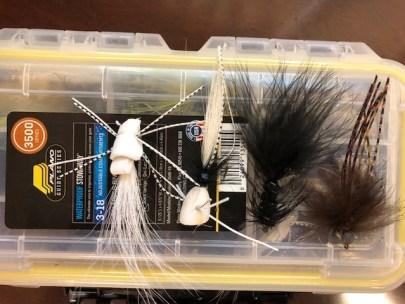 Drdger bass bug box Sept 2018