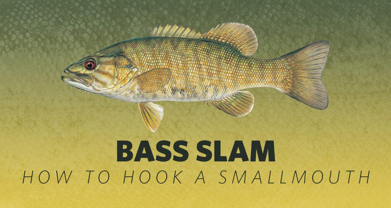 How to Hook A Bass Slam: Smallmouth Bass