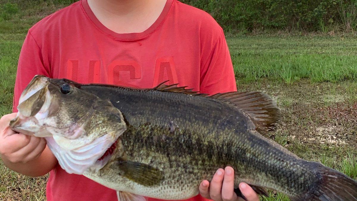 Georgia Fishing Report: March 22, 2019