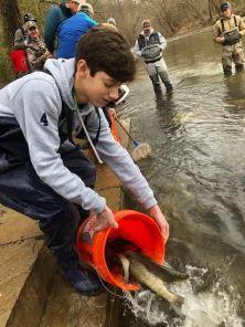 volunteer stocks trout