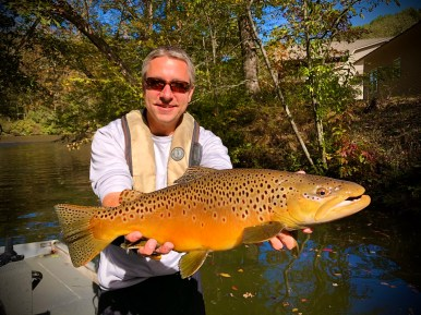 Toccoa River male brown trout showing incredible colors, like this impressive 6-pounder!