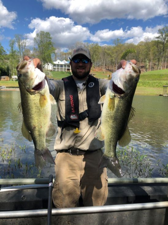 Largemouth found shallow in the back of Bell Creek at Chatuge