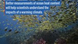 Tracking Ocean Heat with Magnetic Fields