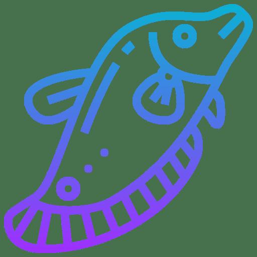 Fishu