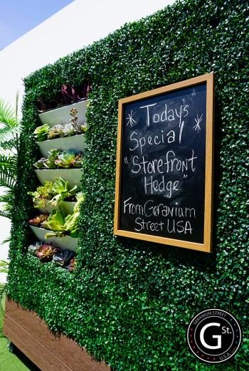 storefront hedge