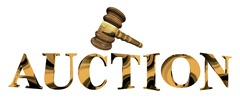 bigstock-Auction-8007705