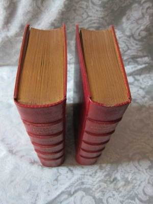The Posthumous Papers of the Pickwick Club 2 Vols. Top View