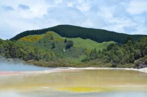 hot-springs-north-island