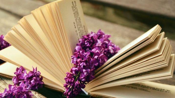 nyitott könyv