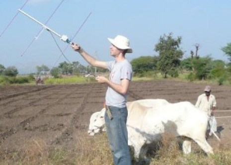 Standing in a field with a radio antenna, next to a cow