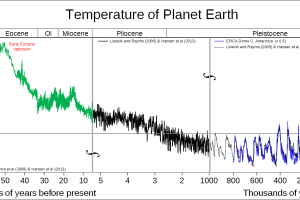 Geological temperature history of Earth