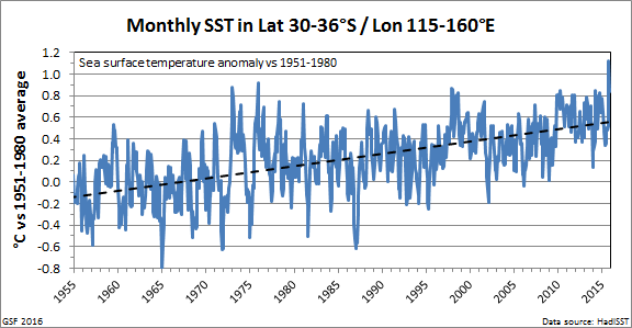 Local sea surface temperature anomalies